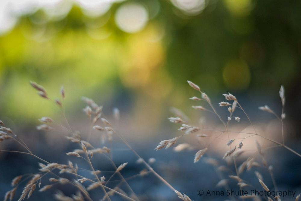 Santorini_photography_bokeh