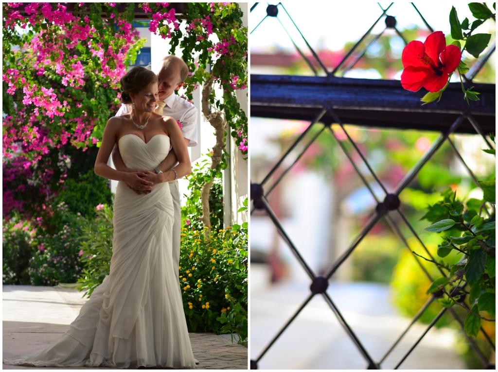 Post-wedding photo shoot