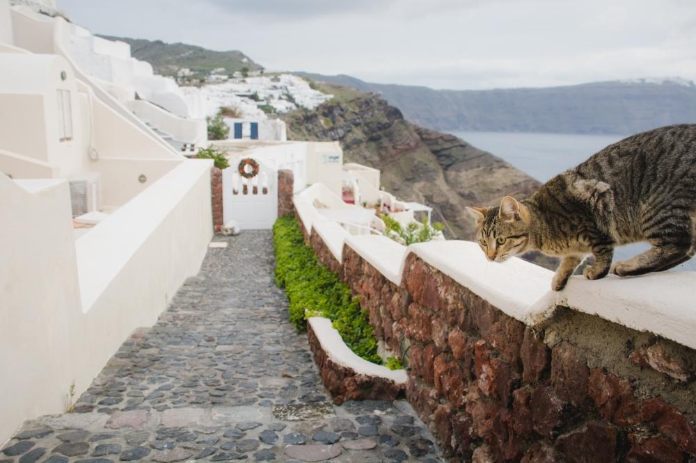 christmas-on-Santorini-greece-holidays-2