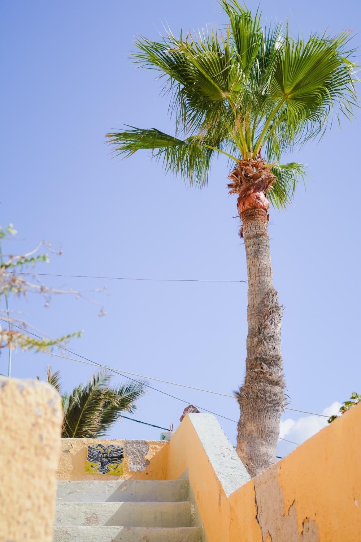 akrotiri-santorini-village-destination-trip-vacation-photographer-003